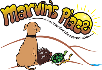 marvinsplace_logo.png
