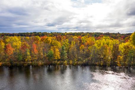 Hudson River Foliage