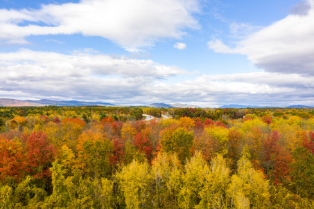 Northway Fall