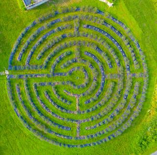 Lavenlair Labyrinth