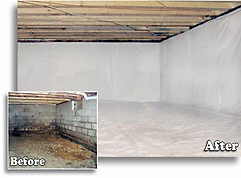 Cincinnati Mold Removal