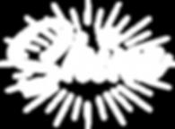Shine_white_logo.png