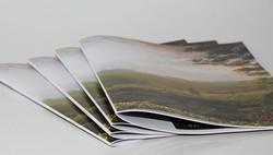 Brochure punto metallico