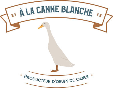 Canne-Blanche-couleur.jpg
