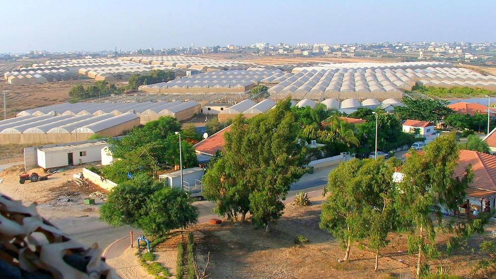 Illustration: Hothouses and Homes in Gush Katif by Yakob Ben-Avraham [CC BY-SA 2.0] via Wikimedia