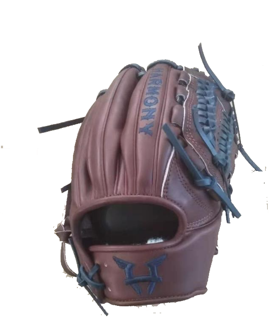 Pitching Glove