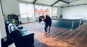 Brazilian Jiu jitsu Bristol.JPG