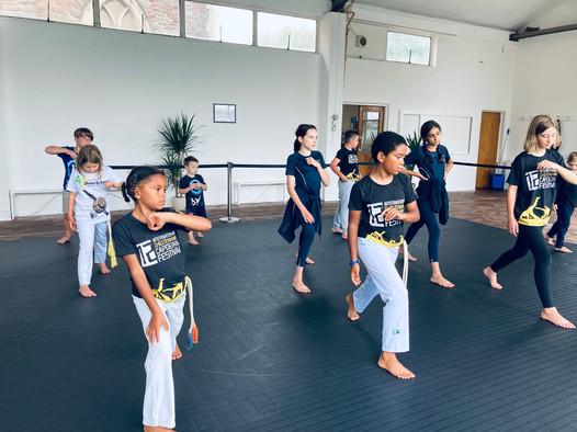 Art of Movement Capoeira Bristol kids cl