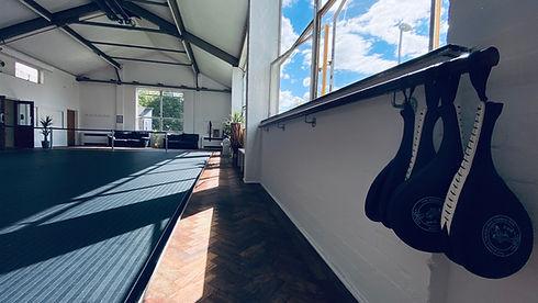 Capoeira bristol.JPG