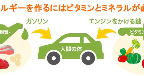 【取扱製品】プレミアム・ベースサプリ