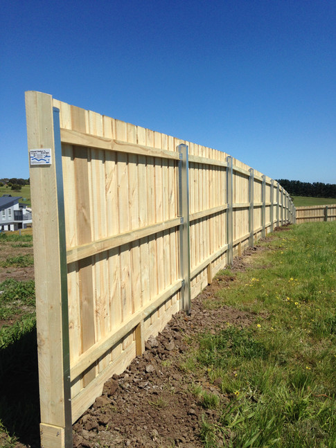 Standard paling fence with Galvanised Steel Posts