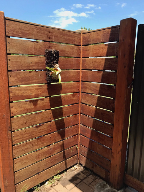 Merbau Fence With 10mm Gap & Capping.