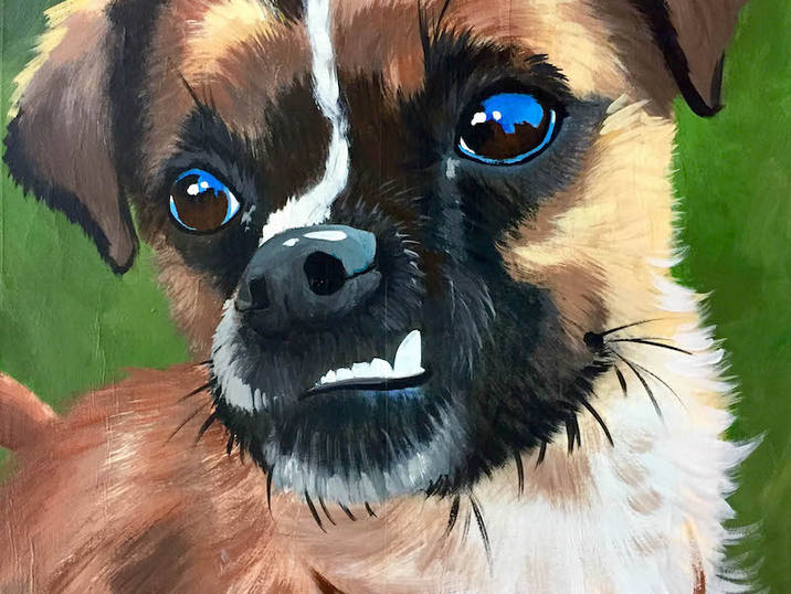 Pet Portrait Sample