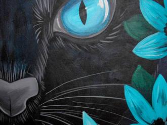 Midnight Meow