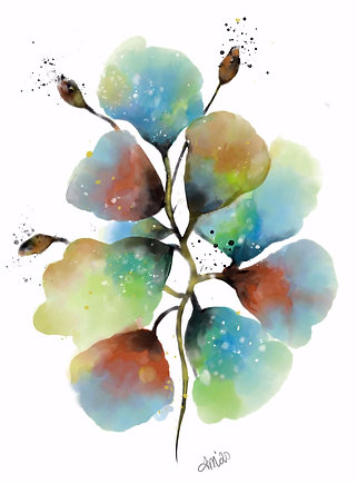 Water Blooms