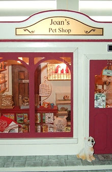 Joan's Pet Shop.jpg