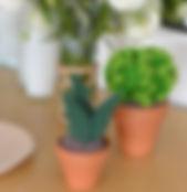 Cactus crochetage décoration