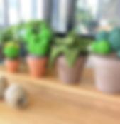 Cactus au crochet bohême maison bonjour à Gréasque