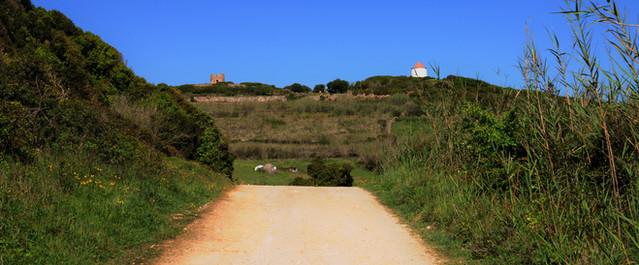Hikes Trails Casas do Carvalho