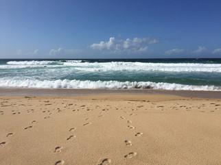 Beach Silver Coast