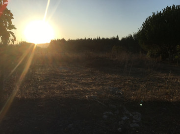 Nascer do Sol Sunrise