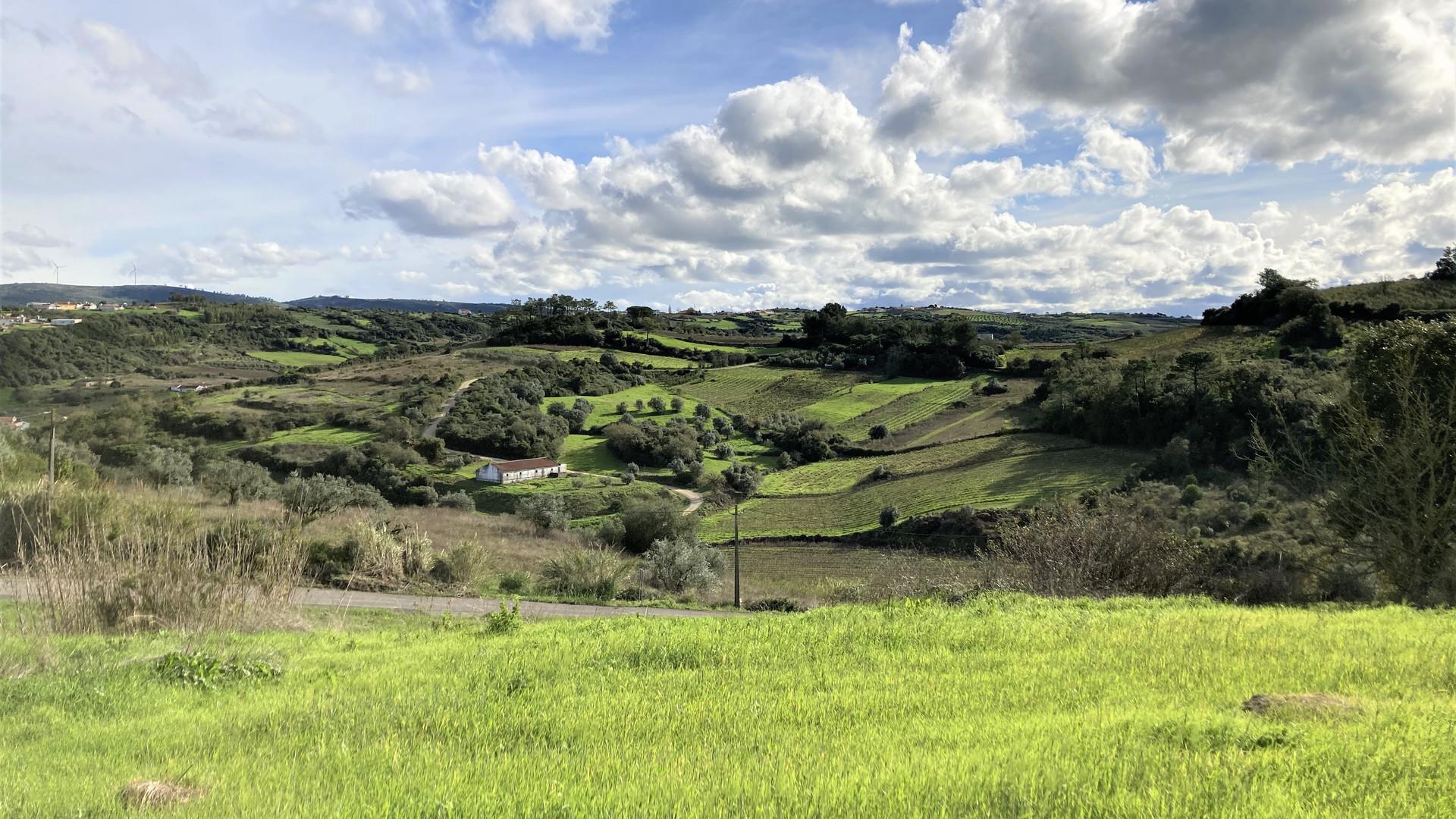 Casas do Carvalho view