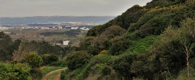 Landscape Casas do Carvalho
