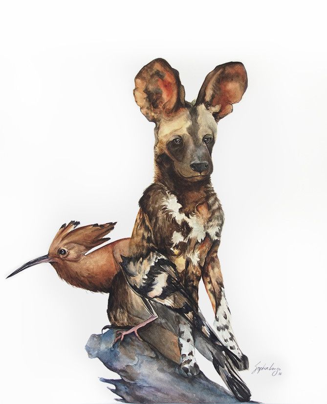 Empathy: African Wild dog and Poupa, 2016