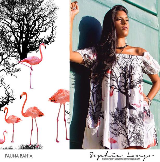 Client: Fauna Bahia