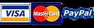 visa master pay.png