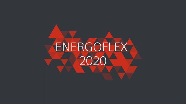 Uplynulý rok 2020