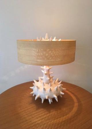 Lampe Oursina