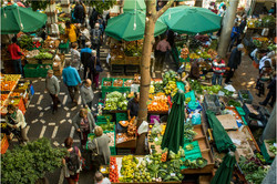 maderia city market-001hs