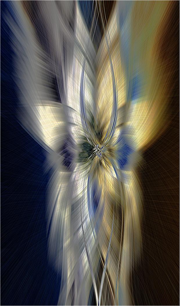 IK001 The Butterfly Effect