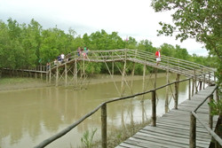 Bakhawan Eco-Park River