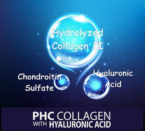 PHC Collagen ingridients