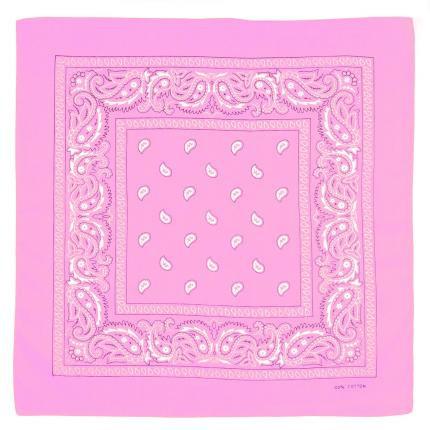 Bandana Rose - Paisley