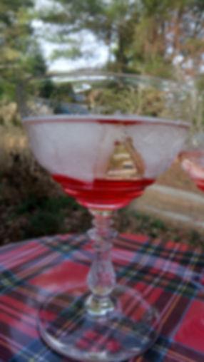 Hibiscus Cider.jpg