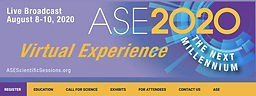 ASE 2020 Virtual Experience
