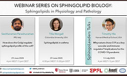 Sphingolipids in Physiology and Pathology