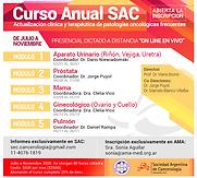 Curso Anual SAC