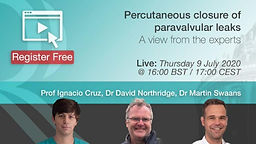 Percutaneous closure of paravalvular leaks - A view from the experts
