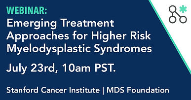 Emerging Treatment Approaches for Higher Risk Myelodysplastic Syndromes