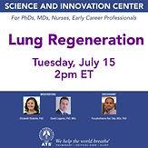 Lung Regeneration