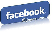 Facebook Elsa Lingerie