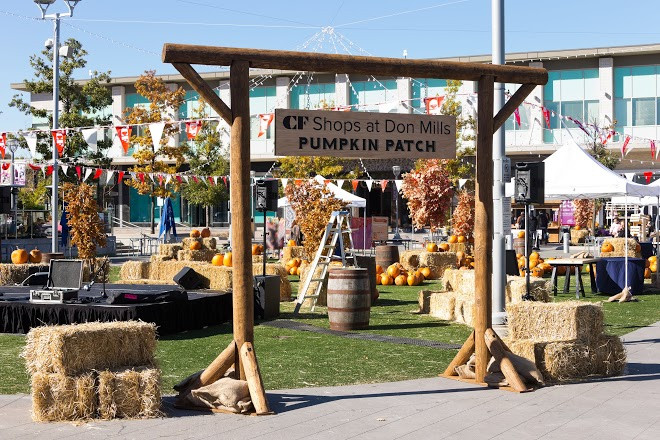 CF Shops at Don Mills Pumpkin Patch