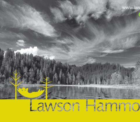 Lawson Hammock