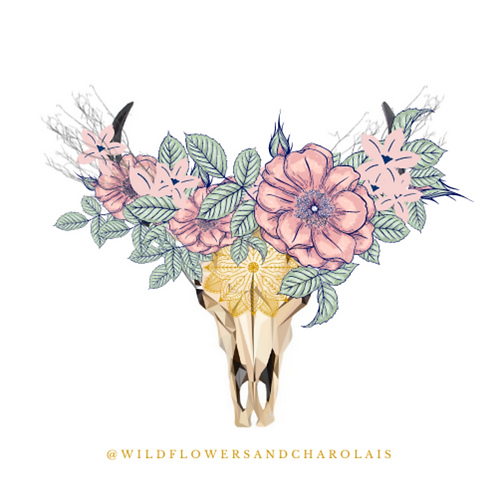 "Wildflowers & Charolais Sticker | 2"" Circle"