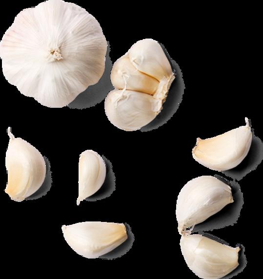 Garlic-Transparent-Image.png