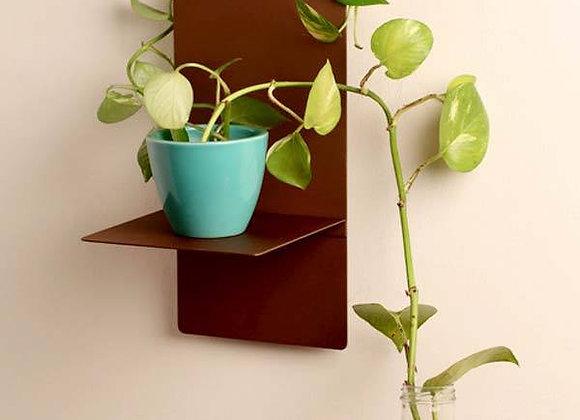 Bronze T shelf
